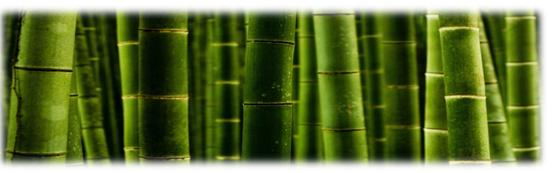 literie bébé en bambou